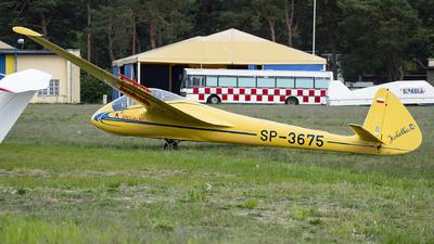 SP-3675 - SZD - 8 Jaskółka - Private