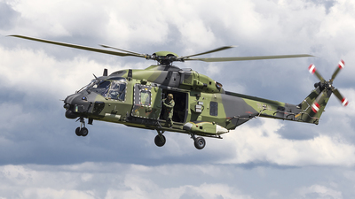 79-10 - NH Industries NH-90TTH - Germany - Army