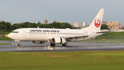 JA339J - Boeing 737-846 - Japan Airlines (JAL)
