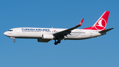 A picture of TCJVK - Boeing 7378F2 - Turkish Airlines - © Julian Mittnacht