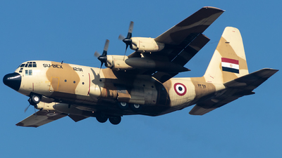 1291 - Lockheed C-130H Hercules - Egypt - Air Force