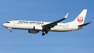 JA336J - Boeing 737-846 - Japan Airlines (JAL)