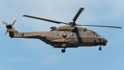 MM81597 - NH Industries NH-90TTH - Italy - Army