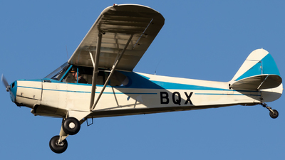 ZK-BQX - Piper PA-18-95 Cub - Private