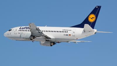 D-ABIX - Boeing 737-530 - Lufthansa