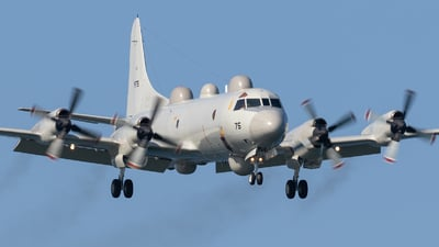 9175 - Kawasaki EP-3C Orion - Japan - Maritime Self Defence Force (JMSDF)
