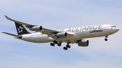 D-AIGV - Airbus A340-313X - Lufthansa