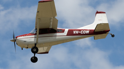 A picture of VHCOW - Cessna 185A - [1850410] - © Gavan Louis