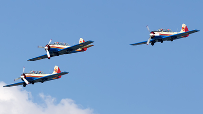 40 - Yakovlev Yak-52 - Romania - Air Force