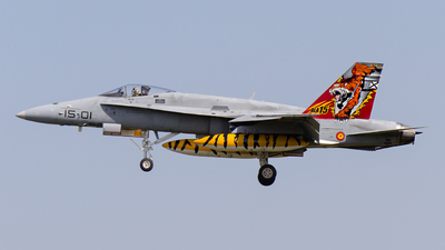 C.15-14 - McDonnell Douglas EF-18A+ Hornet - Spain - Air Force