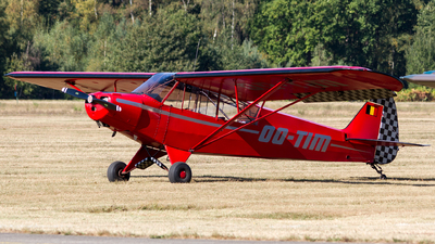 OO-TIM - Piper PA-18-95 Super Cub - Private