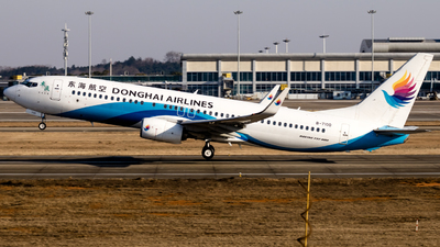 A picture of B7100 - Boeing 7378Q8 - Donghai Airlines - © O.Shotaro