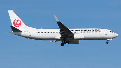 JA317J - Boeing 737-846 - Japan Airlines (JAL)