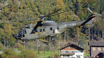 T-313 - Aérospatiale AS 332M1 Super Puma - Switzerland - Air Force