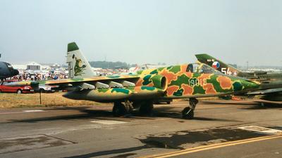 9013 - Sukhoi Su-25K Frogfoot - Czech Republic - Air Force