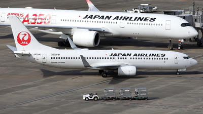 A picture of JA334J - Boeing 737846 - Japan Airlines - © kouyagi