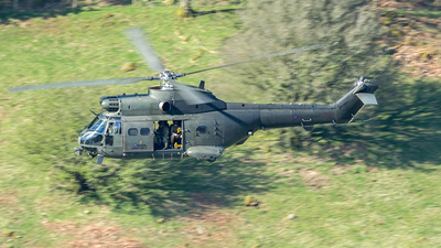 XW212 - Westland Puma HC.1 - United Kingdom - Royal Air Force (RAF)