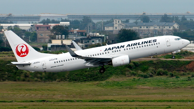 A picture of JA305J - Boeing 737846 - Japan Airlines - © Hon Kit
