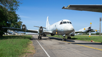 FAB7203 - Lockheed P-3AM Orion - Brazil - Air Force