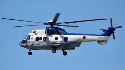 01024 - Eurocopter EC 225LP Super Puma II+ - Japan - Ground Self Defence Force (JGSDF)