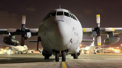 TC-100 - Lockheed L-100-30 Hercules - Argentina - Air Force