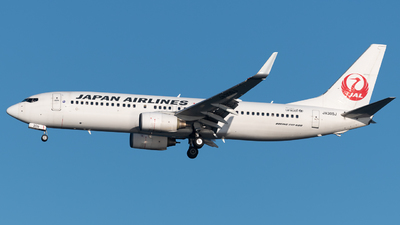 JA309J - Boeing 737-846 - Japan Airlines (JAL)