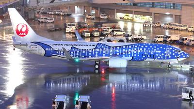 A picture of JA05RK - Boeing 7378Q3 - Japan Transocean Air - © Kittan