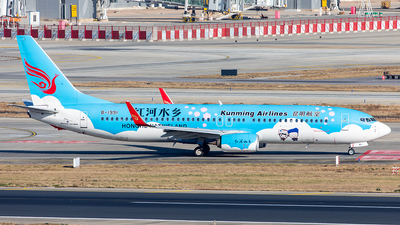 A picture of B1991 - Boeing 73787L - Kunming Airlines - © Yan Shuai