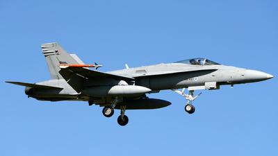 HN-437 - McDonnell Douglas F/A-18C Hornet - Finland - Air Force