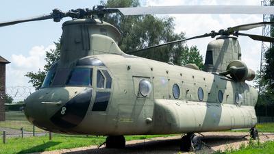 03-08003 - Boeing CH-47F Chinook - United Kingdom - Royal Air Force (RAF)