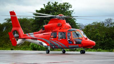 YVO202 - Eurocopter AS 365N3 Dauphin - Petroleos de Venezuela PDVSA