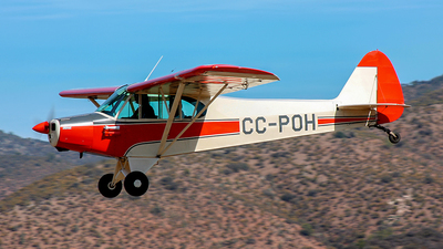 CC-POH - Piper PA-18 Super Cub - Private