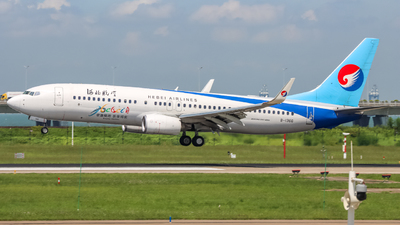 A picture of B1366 - Boeing 7378LW - Hebei Airlines - © TOY