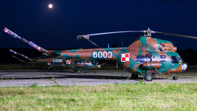 6003 - PZL-Swidnik Mi-2 Hoplite - Poland - Army