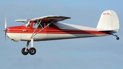OO-REL - Cessna 140 - Private