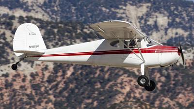 A picture of N1875V - Cessna 140 - [14055] - © David Lee