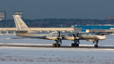 RF-94199 - Tupolev Tu-95 Bear - Russia - Air Force