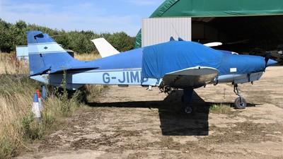 A picture of GJIMB - Beagle B121 Pup - [B121033] - © Ian Johnson