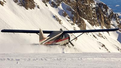 N995SP - De Havilland Canada DHC-2 Mk.I Beaver - Private