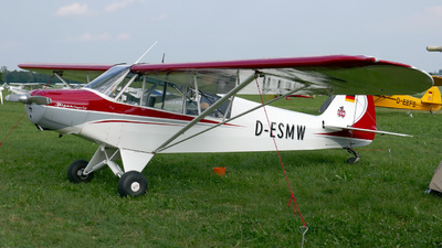 D-ESMW - Piper PA-18-95 Super Cub - Private