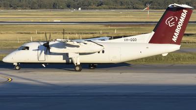 VH-QQD - Bombardier Dash 8-102A - Maroomba Airlines
