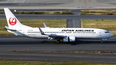 JA313J - Boeing 737-846 - Japan Airlines (JAL)