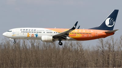 A picture of B5590 - Boeing 73785N - Shandong Airlines - © TasKforce404-HK416