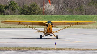 N49624 - Piper J-3C-65 Cub - Back Seat Flyers