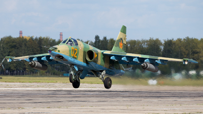02 - Sukhoi Su-25 Frogfoot - Kazakhstan - Air Force