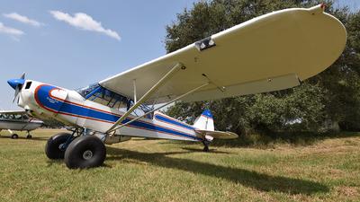 N1195A - Piper PA-18-125 Super Cub - Private