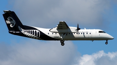 ZK-NEW - Bombardier Dash 8-Q311 - Air New Zealand Link (Air Nelson)