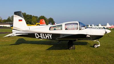 D-ELHY - Gulfstream AA-5B Tiger - Private