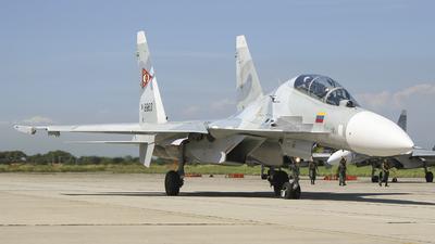8963 - Sukhoi Su-30MK2 - Venezuela - Air Force