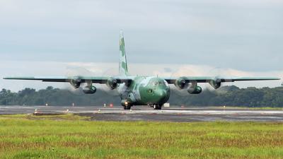 FAB2473 - Lockheed C-130H Hercules - Brazil - Air Force